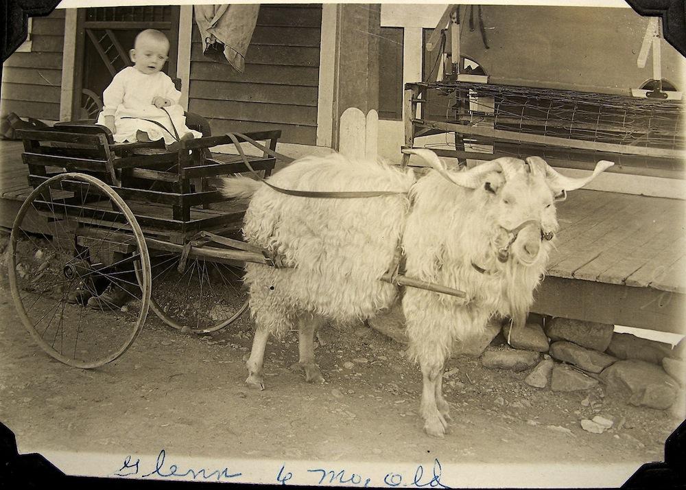 Baby Glenn and Goat