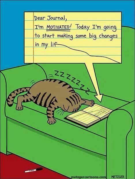 unmotivatedcat