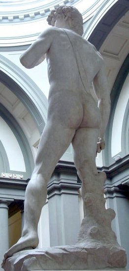 A view you don't often see of Michaelangelo's David...