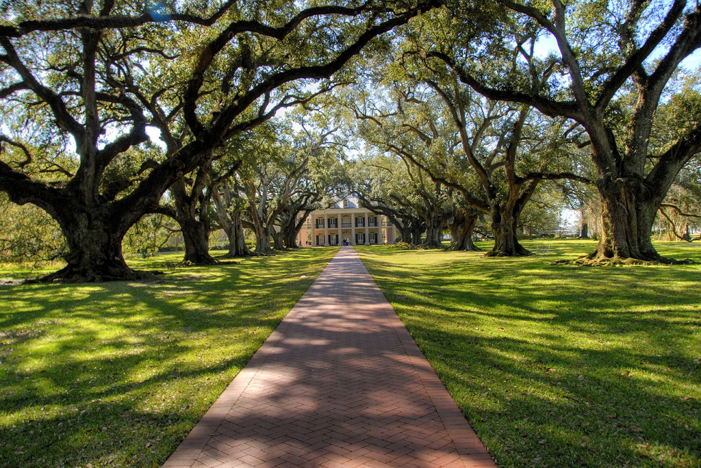 Oak Alley Plantation. CC2.0 photo by Corey Balazowich.
