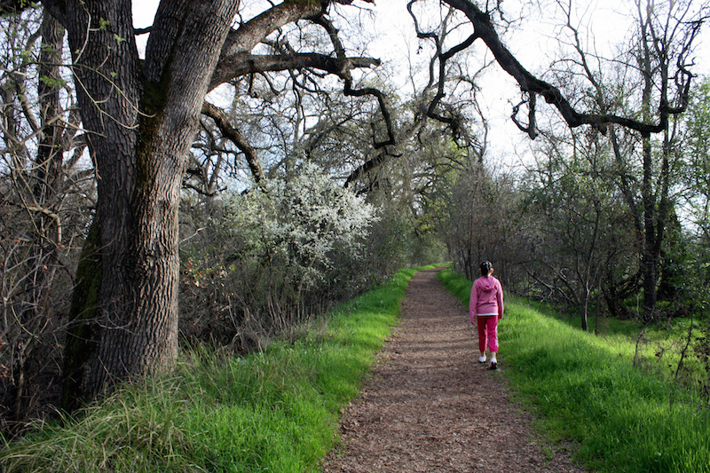 Young hiker @ Gibson Ranch Regional Park. CC2.0 photo by Ray Bouknight.